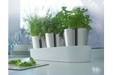 Zestaw 3-ech doniczek na zioła - Auerhahn - Herbs@Home